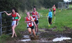 Kilnaboy Cross-Country 2016 Results