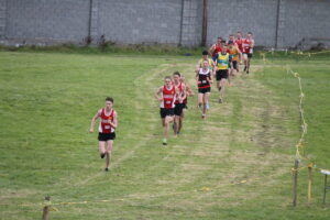 Clarecastle XC course